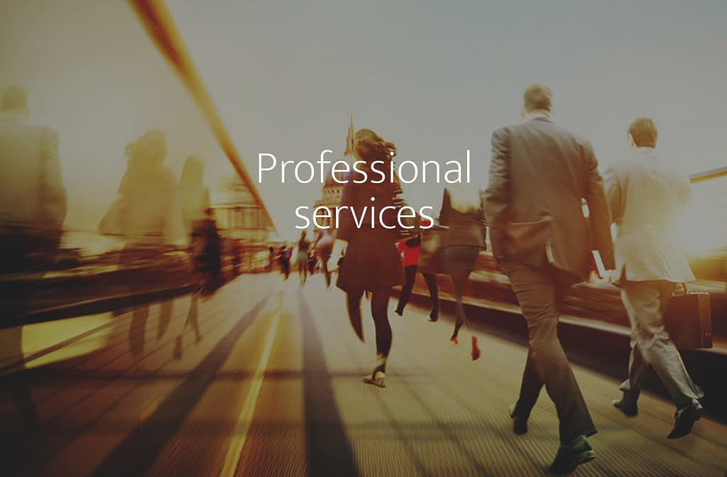 Professional services sector