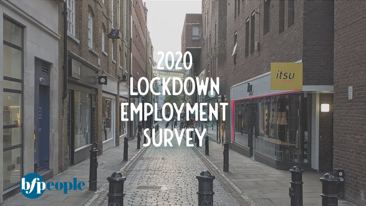 Lockdown Employment Survey – the results